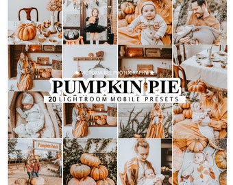 20 Mobile  Lightroom Presets PUMPKIN PIE, Autumn Mobile Preset  Lightroom, Presets for Fall Season, Desktop Presets for Bloggers