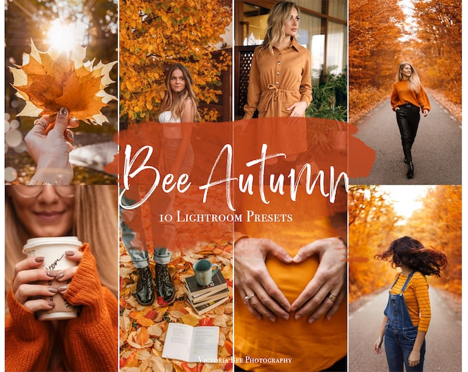 Lightroom Presets BEE AUTUMN, fall presets for desktop and mobile Lightroom, bright autumn filter for bloggers