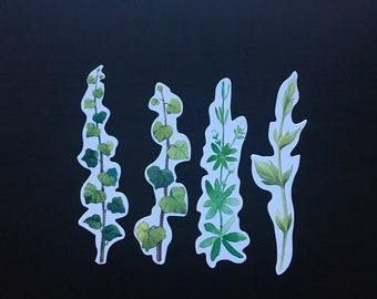 Scrapbooking Paper Plant Cut Outs