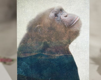5x7 Greeting Card Set - 5 Cards - Chimpanzee Double Exposure