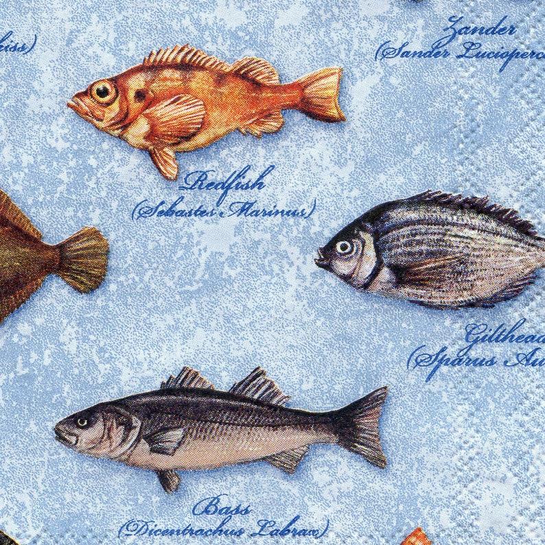 4 fish napkins decoupage Sea life paper napkins Fish with names serviettes 13x13 inch Scrapbooking paper