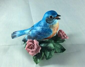 Garden birds by Lenox Eastern bluebird