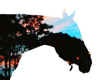 Brilliant Sunset double exposure horse note card or greeting card