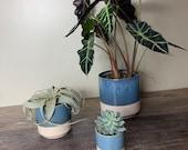 Bailey Ceramic Pots