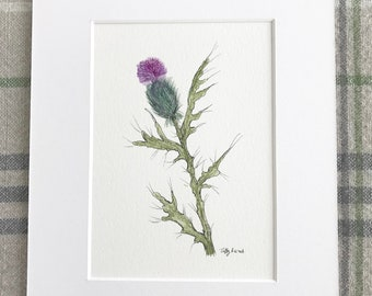 Original watercolor purple thistle