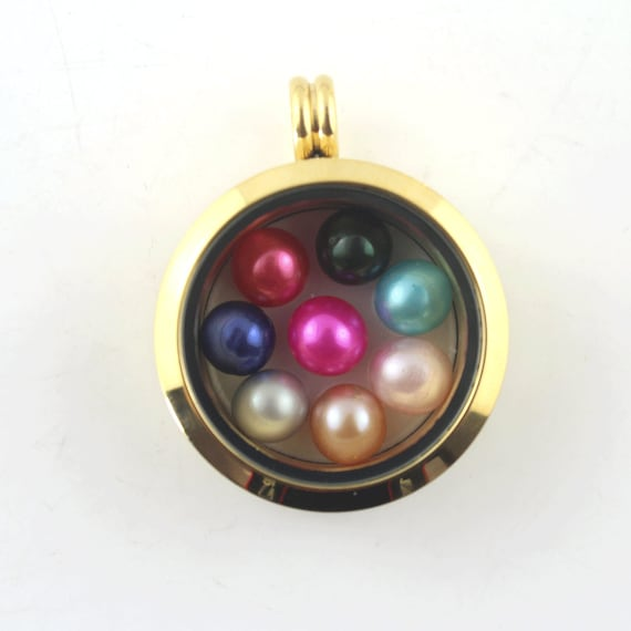 Happy Fathers Day  **UK SELLER** Living Memory Locket Floating Charm