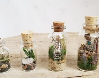 THREE FOR ONE Terrariums / No Care / Miniature Wearable Plant / Terrarium Necklace / Tiny Eco System / Home Decor / Wedding