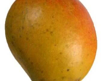 Bombay Mango - 3 Gallon