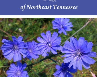 Edible Plants of Northeast Tennessee