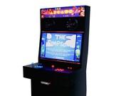2 Player Slim Arcade Machine Cabinet! Ships Fully Assembled (pi4)