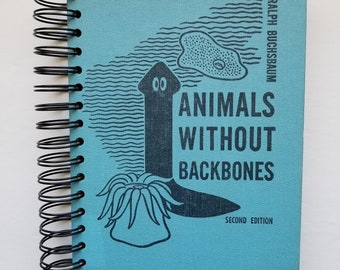 Upcycled book journal    Repurposed book   Junk journal   Altered book