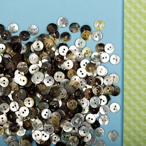 woman polo t-shirt knitwear man child Mother of pearl buttons 10mm 20pz shirt