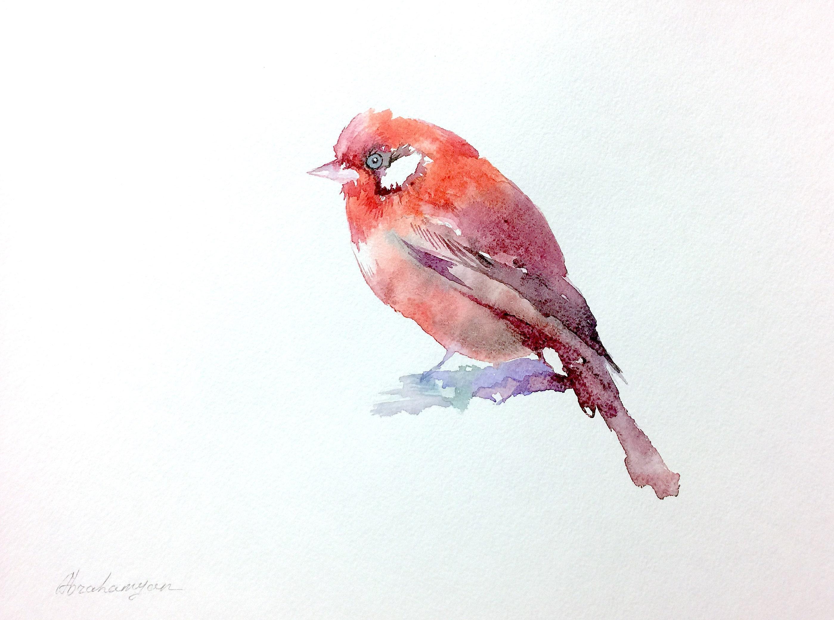 Watercolor artwork Birds Cardinal signed Handmade painting Illustration wall