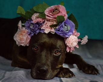 Fine Art print art photography flower Dog
