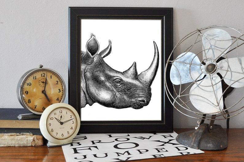 Rhinoceros Print #1, Rhino, Safari, Animal, Digital Download, Wall Art,  Vintage Decor, Printable Art, Instant Download Print, Horn, Modern
