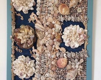 a panel of seashells