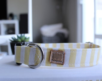 Yellow Stripe Dog Collar