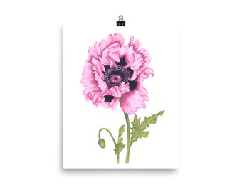 Poppy flower print wall art