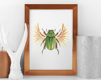 scarab beetle print, nature inspired watercolor, insect home decor, cool bug design, modern decoration, scientific poster, simple real bug