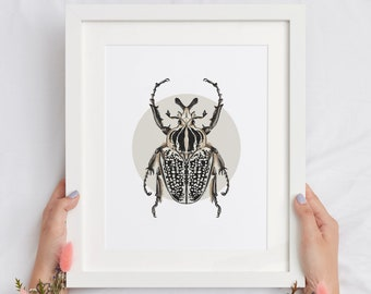 Goliath beetle print, nature inspired watercolor, insect home decor, cool bug design, modern decoration, scientific poster, simple real bug