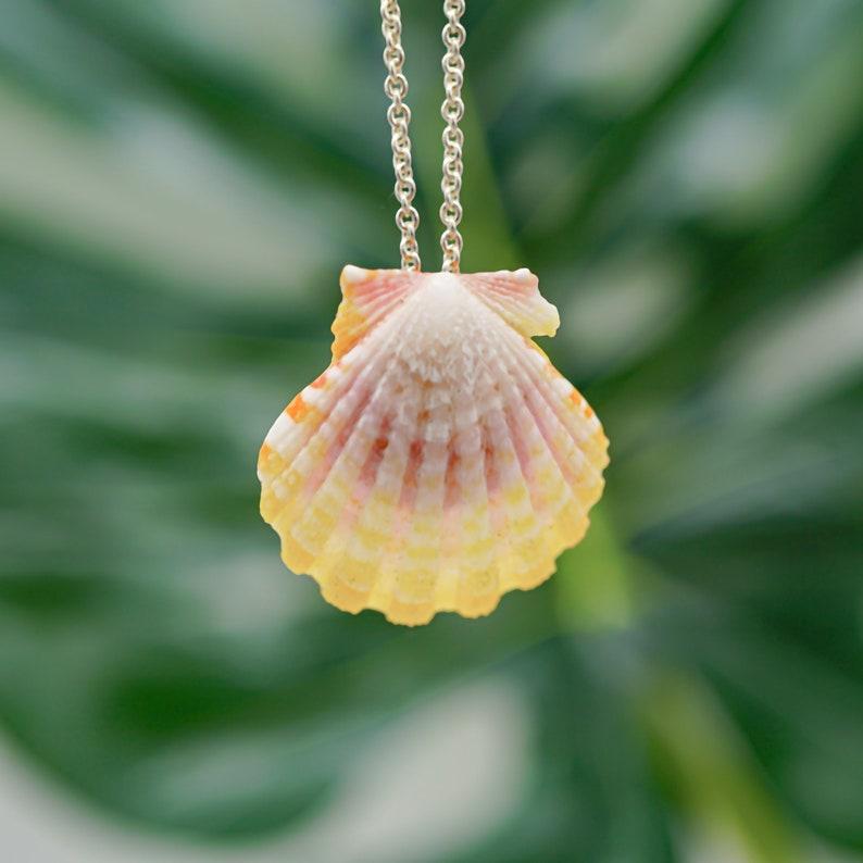Sunrise shell necklace for her Hawaiian Sea Shell Pendant image 0