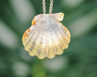 Moonrise Shell Necklace, Sunrise Shell Jewelry, Beach Lovers Gift Boho Necklace for Her, Summer Jewelry, Hawaiian Jewelry Sunrise Pendant