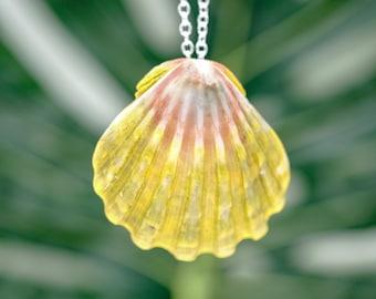 Moonrise Shell Pendant, Beach Jewelry Sunrise Shell Hawaiian Jewelry, Shell Necklace Beach Gift, Hippie Jewelry, Tropical Shell Wearable Art