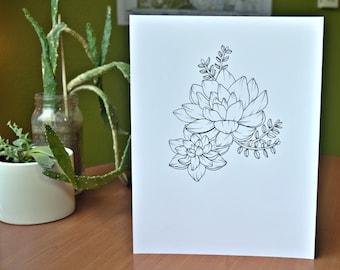 Succulent Hand Drawn Illustration