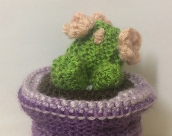 Tiny Round Knitted Cactus with Flowers