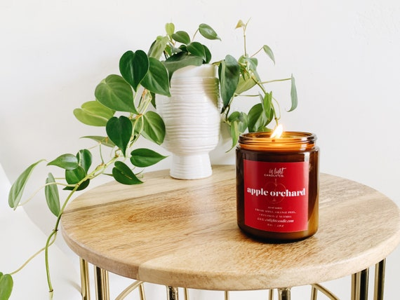Apple Orchard - 4 oz or 8 oz Pure Soy Fall Candles {Apple Cider Spicy Fall Candle}