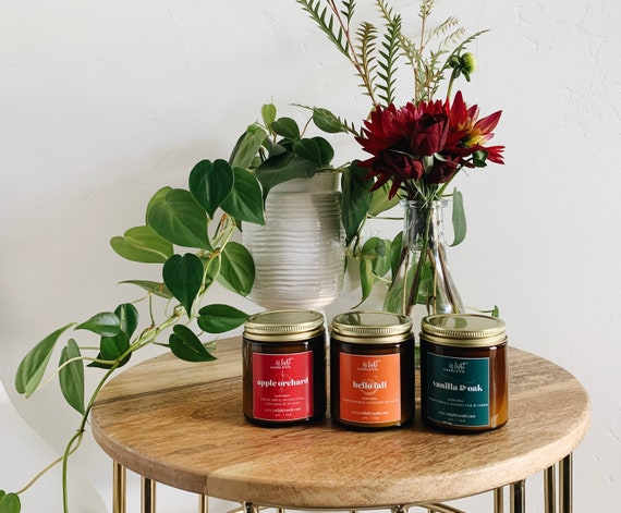 Fall Scent Sampler Pack - 3 4oz Pure Soy Fall Candles-Pumpkin Spice Hello Fall, Apple Cider Orchard, Vanilla + Oak Cozy, Spicy