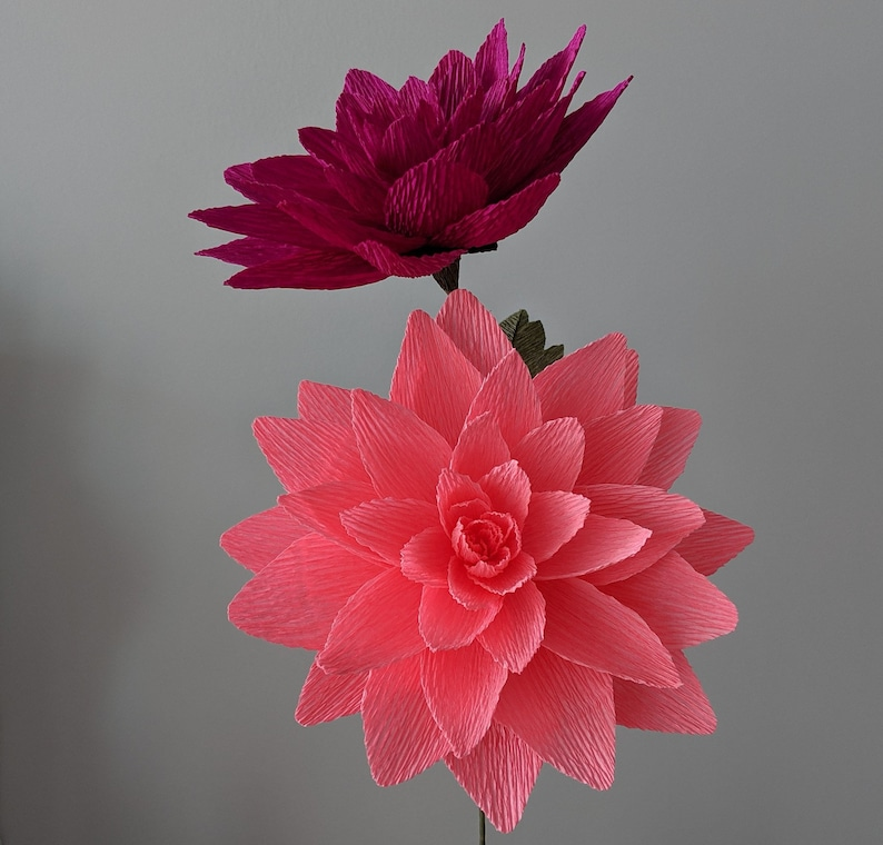 Downloadable Crepe Paper Dahlia Template Pdf Printable Download Diy Paper Flower Template Paper Dahlia Template