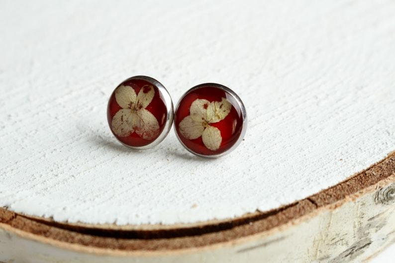21st birthday gift for her terrarium earrings Black stud earrings real nature earrings red stud earrings dried flower gift