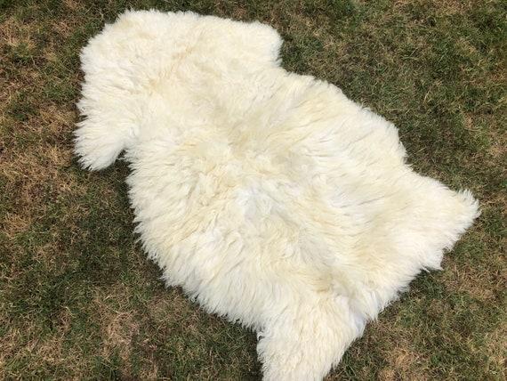 Genuine Real Australian SINGLE Pelt Large Sheepskin Rug 2ft x 3.5ft