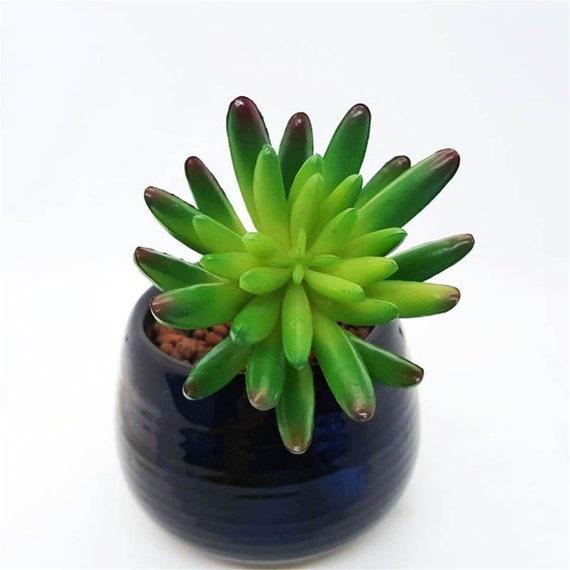 Artificial Sedum Fake Succulent Plant Terrarium Plant Etsy