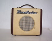 DANELECTRO dirty thirty AMPLIFIER