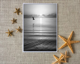 Seagull Over the Bay Note Cards (set of 8)