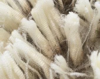 Raw Merino x Southdown Wool