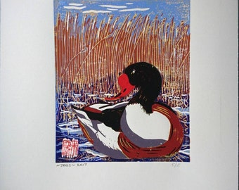 Shelduck, Reduction linocut print