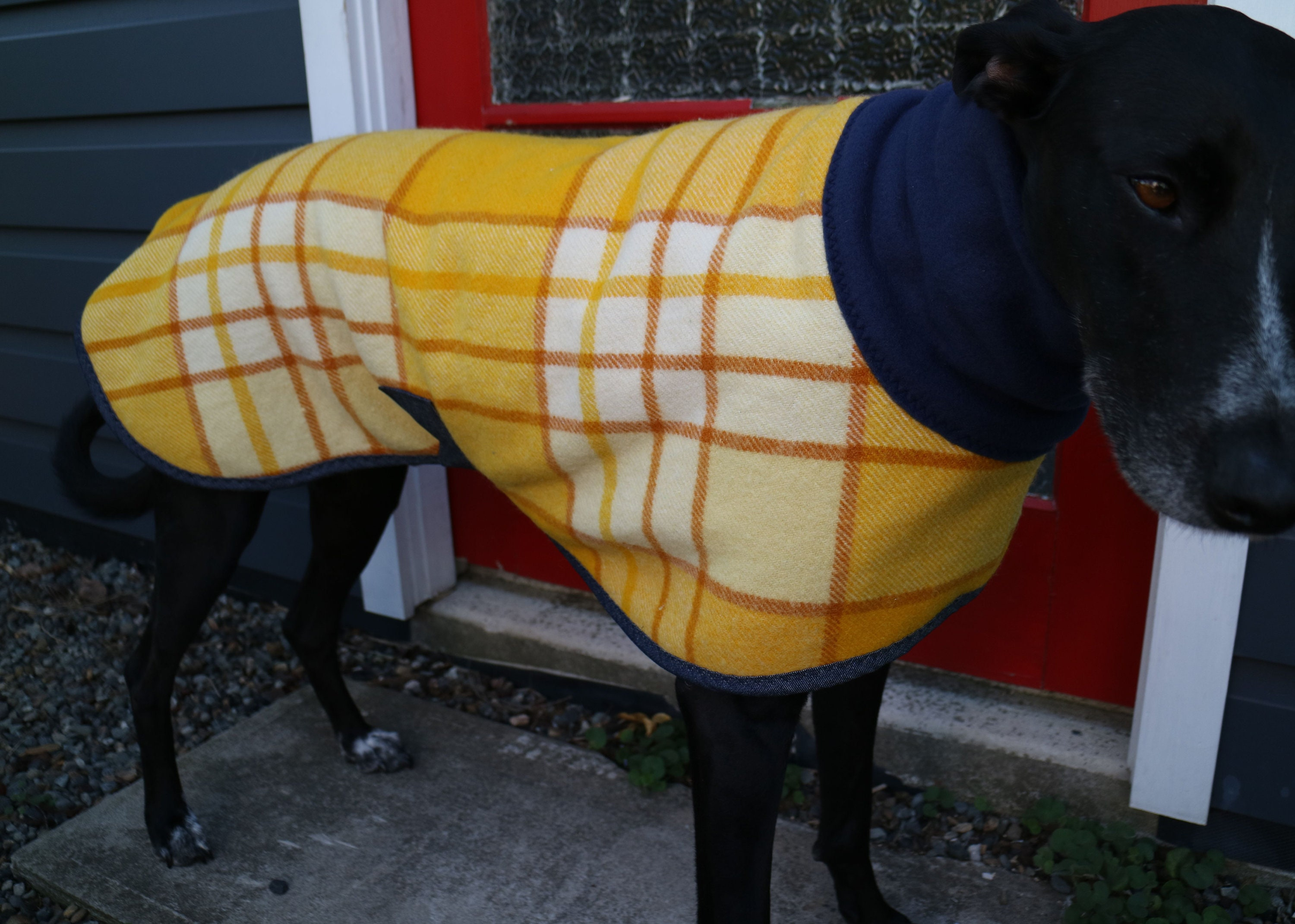 Gentleman/Lady:plaid checks in mustard yellows...winter coat for a greyhound in fleece:Personality vintage wool blanket and fleece:Personality in Trend 5283d4
