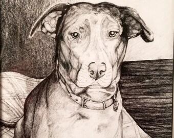 Portrait of a Man's Best Friend, Dog Portrait, Custom Portrait
