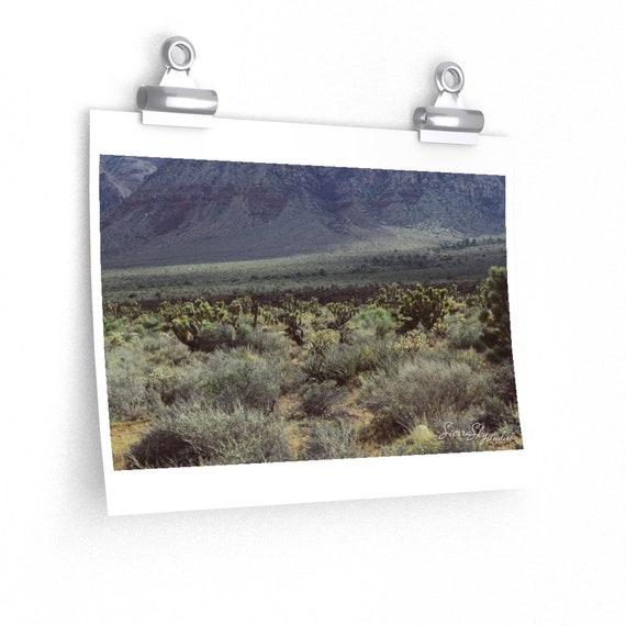 Green Desert High Quality Print; Photography Print; Poster; High Quality Mate Finish Print