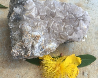 Clear cubed fluorite cluster/ rock