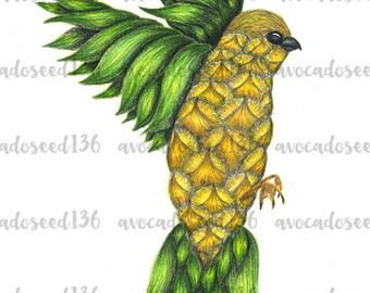 Colored Pencil Pineapple Bird