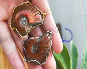 Madagascar conch fossilized snout necklace pendant.
