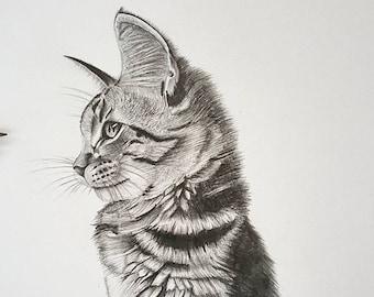 Cat Pencil Sketch,cat wall decor,cat wall hanging,cat wall art,cat gifting ideas,cat pencil work, animal art, animal decor, animal wall art