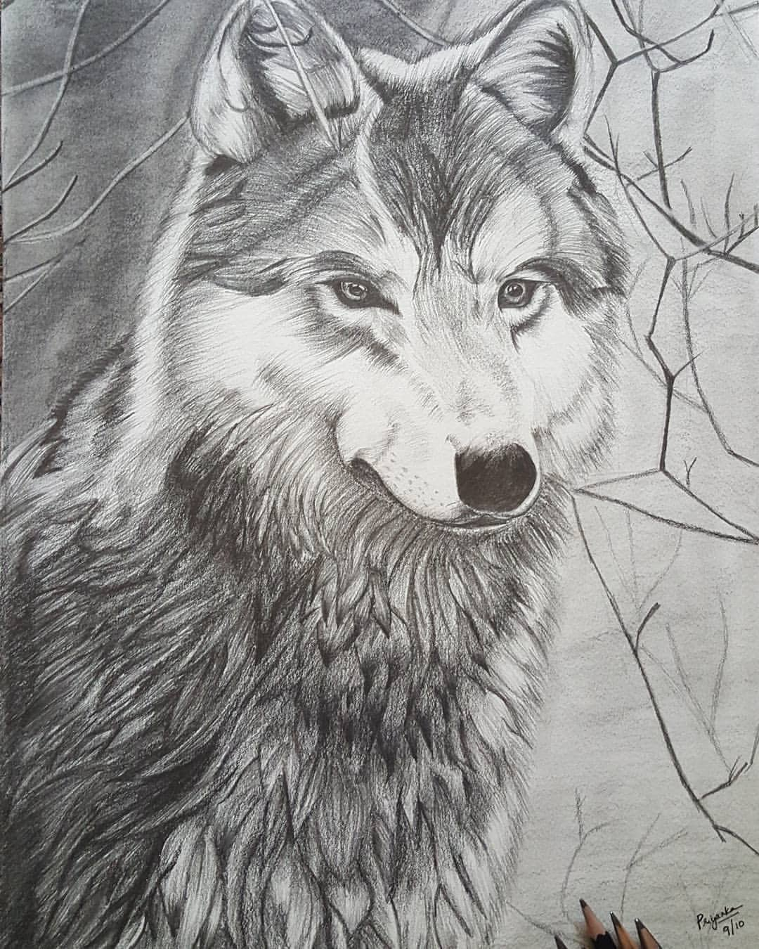 The lone wolf pencil sketch pencil artwolf pencil art wolf wall decor wolf wall hanging animal art animal gift ideas wolf framewolf