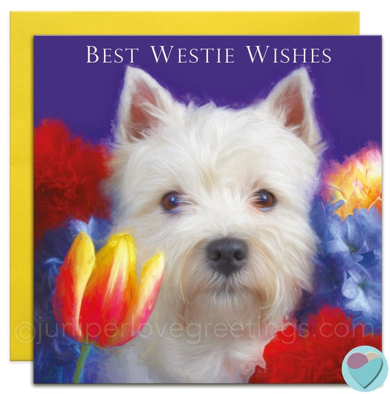 Westie Card Birthday Greeting Card Best West Wishes West Etsy