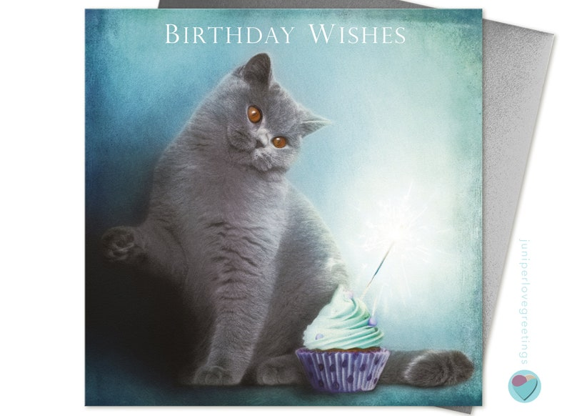 British Shorthair Cat Birthday Card Blue Kitten
