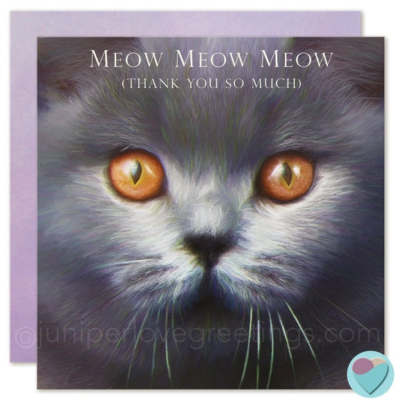 Thank You Card British Blue Cat Lover Shorthair